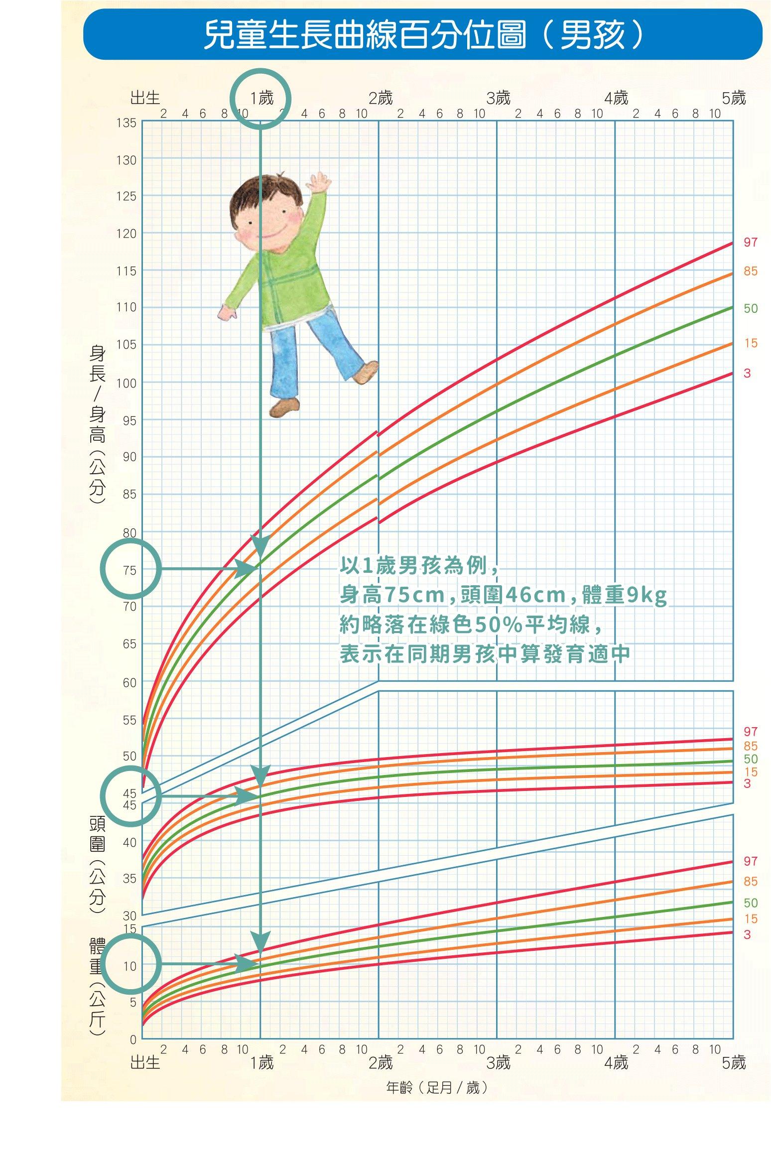 兒童生長曲線百分比